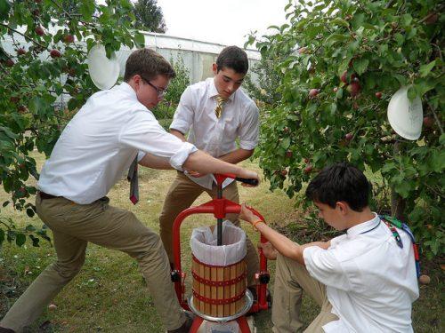 Maharishi School apple pressing Seed to Table